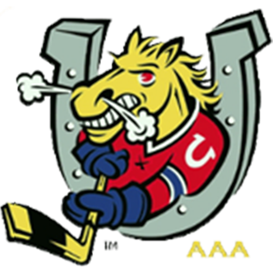 Barrie Colts AAA Zone